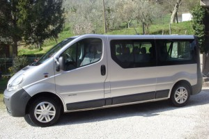 Renault Traffic 8+1